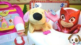 Gufetta dei PJ MASKS SUPER PIGIAMINI ha un nuovo Cucciolo! Facciamogli il bagnetto [VIDEO EDUCATIVO]