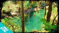 7 BEST Hidden Gem Swimming Holes of Oregon