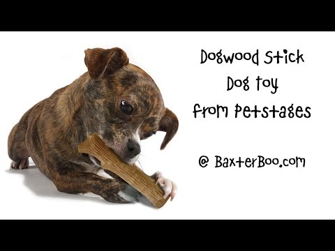 dogwood-stick-dog-toy-from-petstages