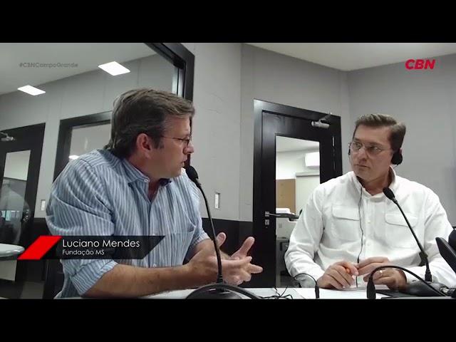 Entrevista CBN Agro: pres. da Fundação MS, Luciano Mendes