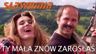 SŁAWOMIR - Ty mała znów zarosłaś (Official Video Clip HIT 2018) mp3