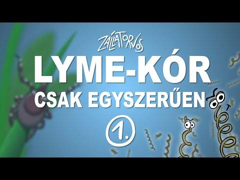 Lyme-kór - csak egyszerűen (1. rész)