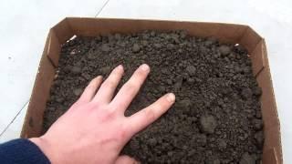 Плодородный грунт(, 2013-04-05T10:49:28.000Z)