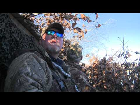Kentucky Duck Hunt & Report