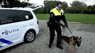 Altijd solo nooit alleen - Politie Hondenbrigade Rotterdam