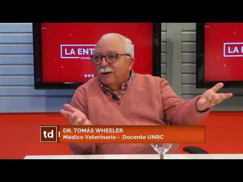 dr.-tomÁs-wheeler-(médico-veterinario---docente-unrc)