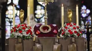 Paris: Erste Bilder aus dem Inneren der Kathedrale veröffentlicht