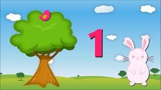 Zaķīts skaita putnus. Mācāmies skaitīt līdz 10. Attīstoša, izglītojoša multfilma bērniem.