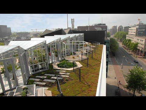 Zoku (Metropoolgebouw - Metro Pool Building) Roof Garden - Project of the Week 10/9/17