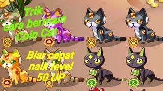 Cara bermain game Coin Cat di Aplikasi #ClipClaps