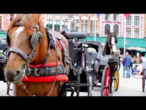 Visit to Brugge city 2017 (Bruggy) - Belgium
