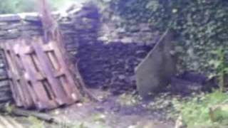 Smallholding in the West of Ireland. Music: Mick Flynn