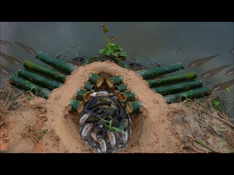 TOP Five 2017 | Amazing Man Catch 5 Different Fish And Eel Trap