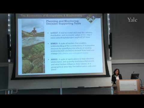 TEEB@YALE: Solutions For Better Stewardship Of Natural Capital - Rosimeiri Portiela