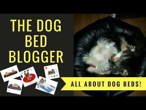 dog-beds---dog-beds---nothing-but-dog-beds!