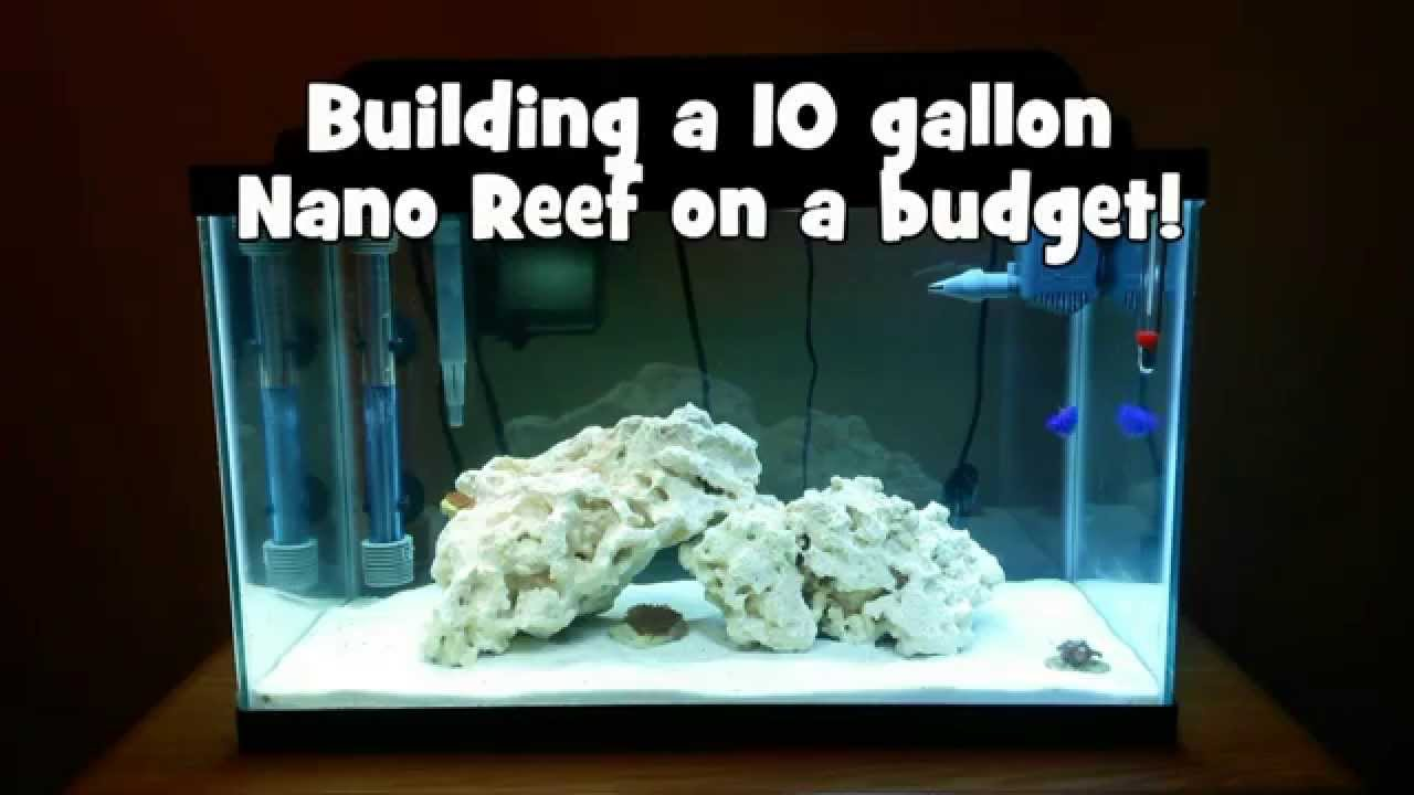Building a 10 gallon nano reef on a budget youtube for Building on a budget