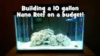 Building a 10 gallon Nano Reef on a budget!