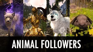 Skyrim Mod: Animal Followers Multi-Spotlight