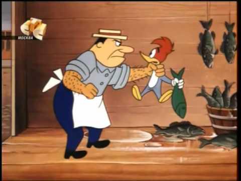 نقار الخشب الحلقة الثانيه - الفقمة الجائعه