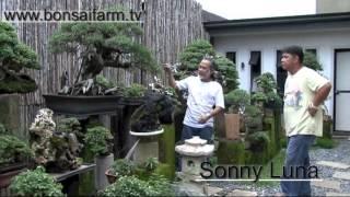 Lindsay farr's World of Bonsai series 2 ...
