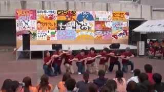 五月祭2013 中夜祭 L.S.B 3回Crew (14th Crew)