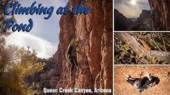Climbing at the Pond! - Queen Creek Canyon, AZ [Adventure Nugget]