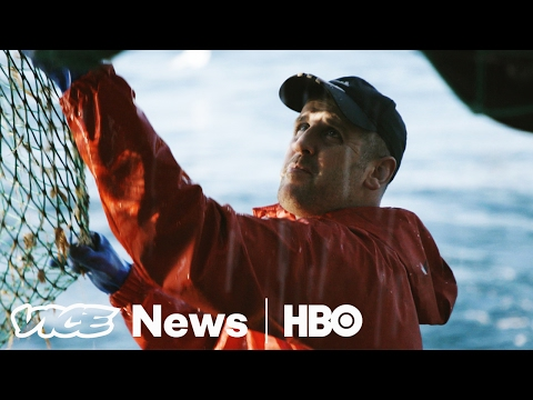 Why British Fishermen Are Excited About Brexit (HBO)
