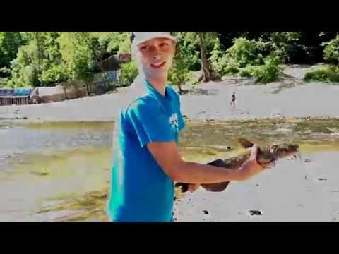 Fishing The Metro Episode 1: Ford Dam