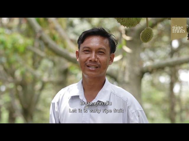 9Fruits : สัมภาษณ์พิเศษ 'การเลือกทุเรียนให้อร่อย' จาก คุณชุมพร เจ้าของสวนลุงพร อ.สอยดาว จ.จันทบุรี
