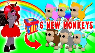 6 BRAND NEW MONKEY Pets Coming…