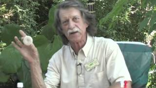 Organic Gardening - Exploring Nature With Dale Branum - The Summer Bug Episode