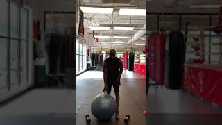 Sweet Science Boxing Club Daily Workouts 4/8/20