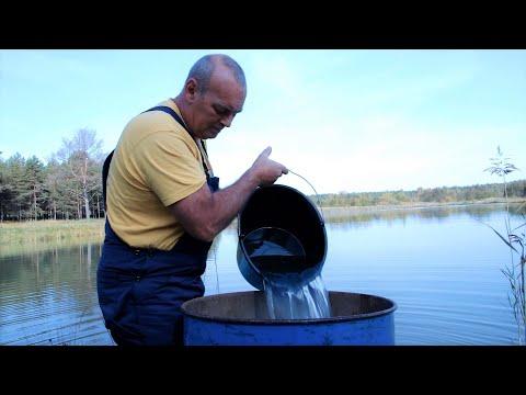 Известкую пруд от аргулюса (рыбья вошь)