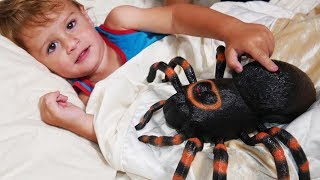 ITSY BITSY SPIDER - and More Nursery Rhymes Song for Children by LETSGOMARTIN