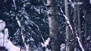 "Siberian Cut | Season 1 Episode 2 | ""Age Old Enemies"""