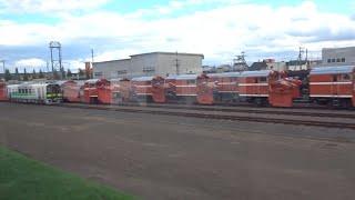【車窓】JR北海道 旭川運転所 大量のラッセル車 キハ261系はまなす編成も留置