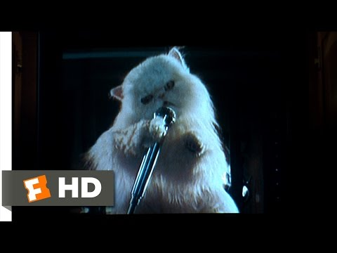 Cats & Dogs (9/10) Movie CLIP - Mr. Tinkles' Ransom Video (2001) HD