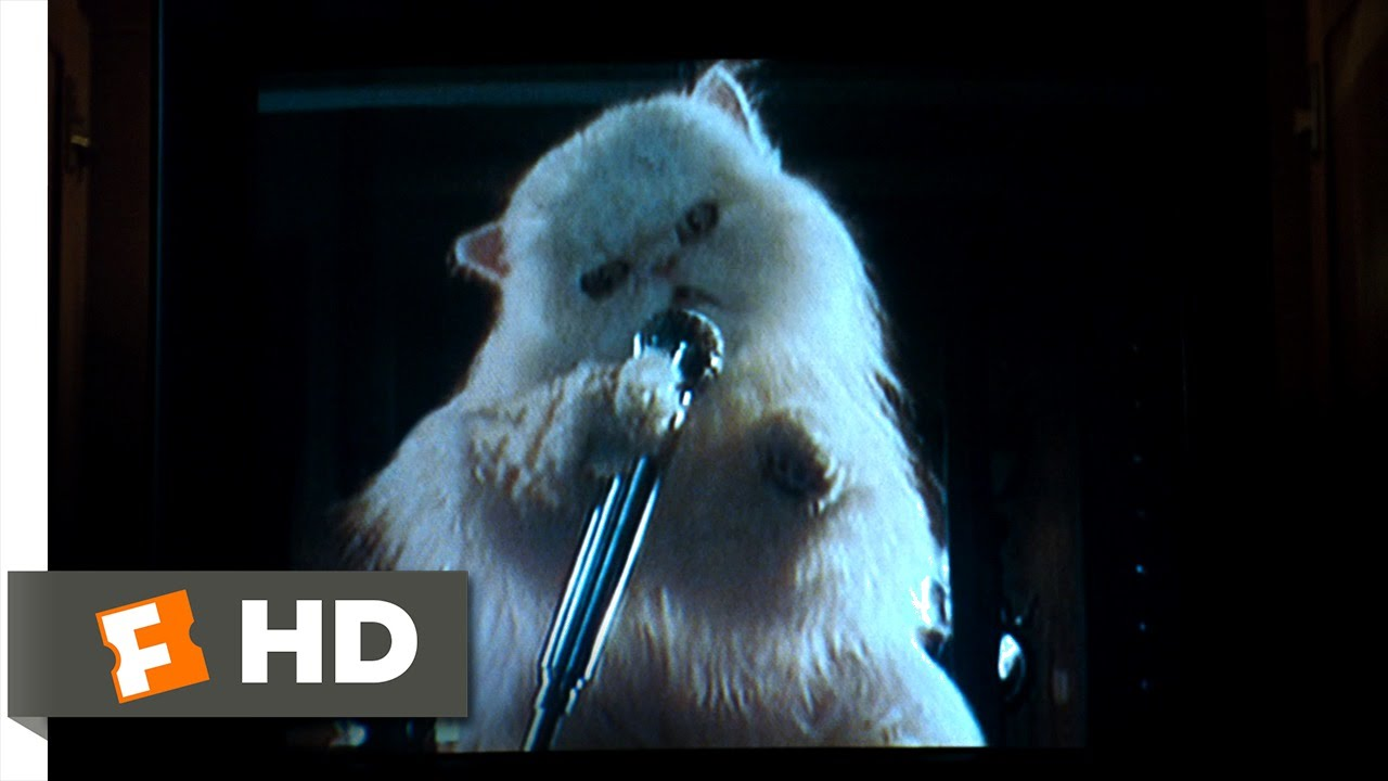 Cats & Dogs (9/10) Movie CLIP - Mr. Tinkles' Ransom Video ...  Cats & Dogs (9/...