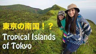 【南国の島】東京都八丈島【旅動画】 Tropical Island Tokyo Hachijojima Travel movie