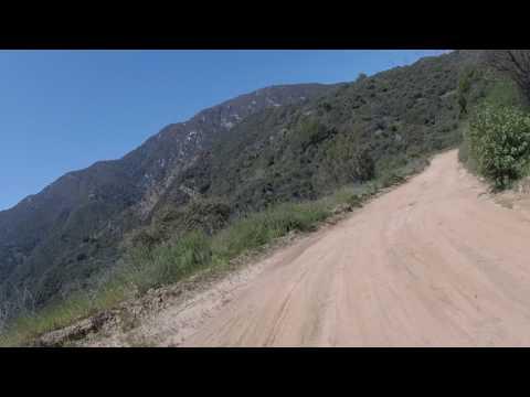 Monrovia Canyon trail 2 AL