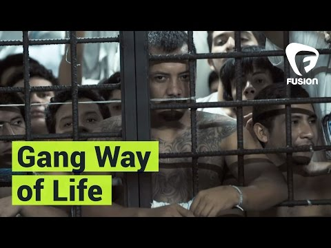 Talking to Gang Members in the Murder Capital of the World