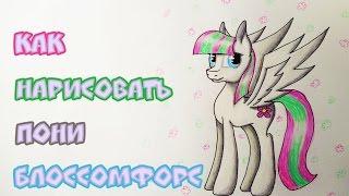 Уроки рисования: как нарисовать пони Блоссомфорс