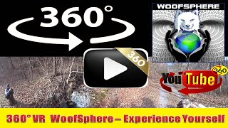 360 Videos | VR | Virtual Reality | WooFSphere | Husky Dog Mushing Part 5