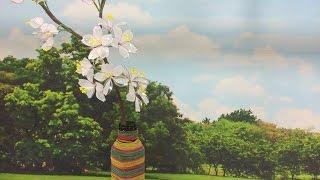 Junko Miazato – Flor Sakura em Vitriarte