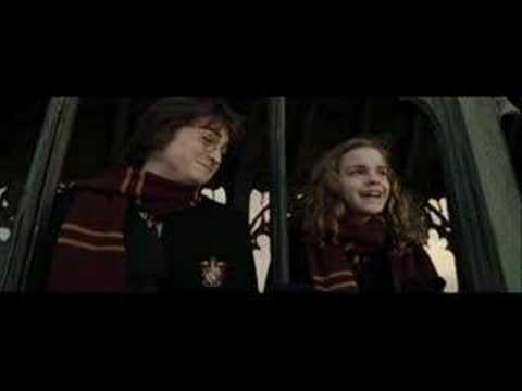 We Could Be In Love (Harry & Hermione)