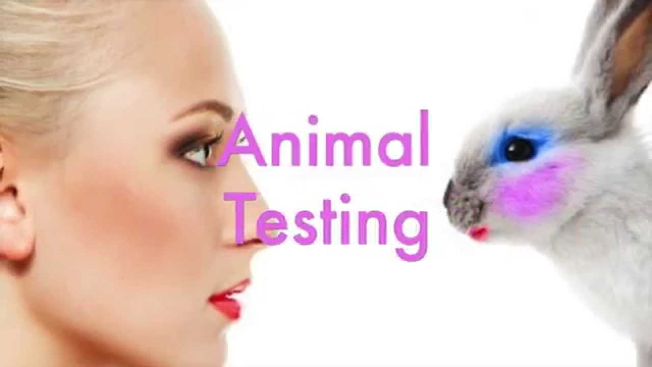 animal testing should be illegal essay This is not an essay forcing you to believe anything i say, actually i encourage you not to listen to me you should go research this topic and you decide whether or not animal testing should be banned or not  animal testing illegalized animal testing should be illegal hurting animals is the same way as hurting people someone can easily.
