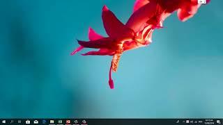 Bai 7: Làm việc với hệ điều hành window