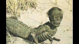 Эта находка мгновенно стала сенсацией. Ловцы аллигаторов выловили неизвестное науке существо.