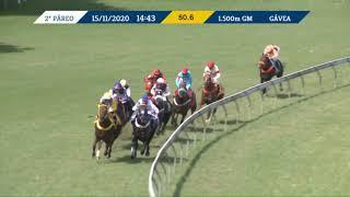 Vidéo de la course PMU PREMIO HELIACO