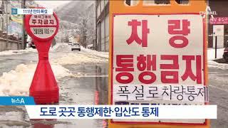 춘분날 111년 만의 폭설…대구 ·경북 일부 휴교령